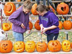 Ivoryton Pumpkin Festival